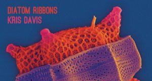 Diatom Ribbons - Kris Davis