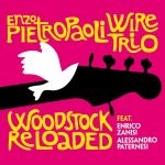 Enzo Pietropaoli Wire Trio - Woodstock Reloaded