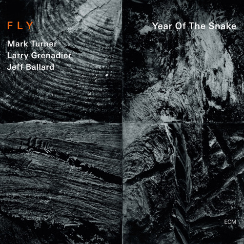 Fly «Year of the Snake»