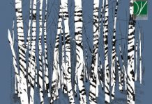 Marco Cappelli Acoustic Trio «Norwegian Landscapes: The Nesbø Project»