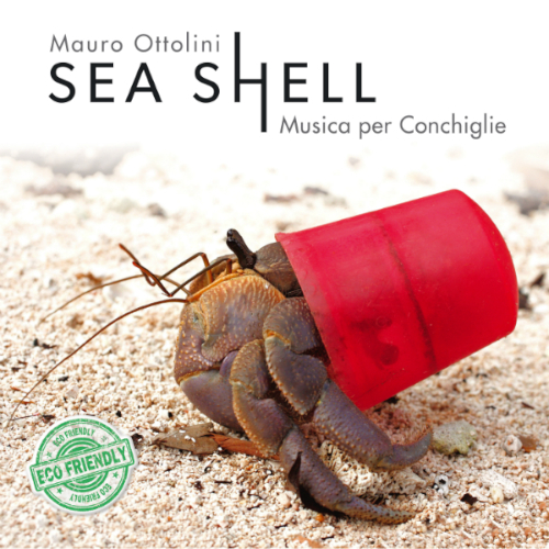 Mauro Ottolini «Sea Shell»