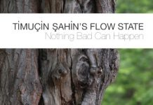 Timuçin Sahin's Flow State «Nothing Bad Can Happen»