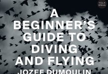 josef dumoulin & orca noise unit a beginner's guide to diving and flying